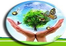 Công ty cổ phần môi trường & phát triển Đô thị Quảng Bình